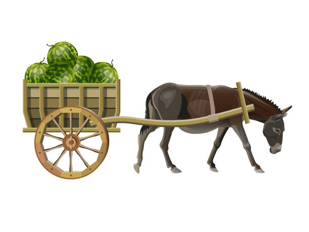 465 Mule Cart Stock Photos, Pictures & Royalty-Free Images - iStock