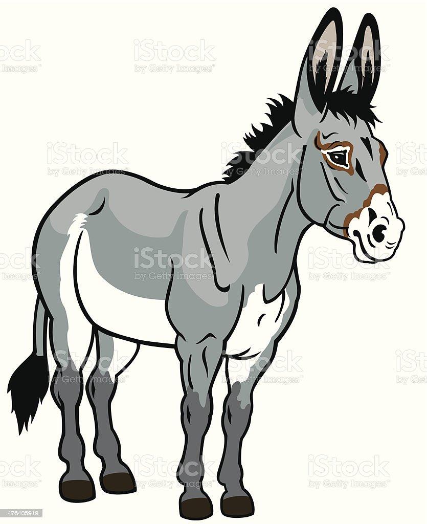 donkey vector art illustration