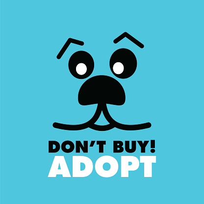 Don't Buy, Adopt-. Hand drawn inspirational quote about pet. Lettering for posters, t-shirts, cards, invitations, stickers, banners.