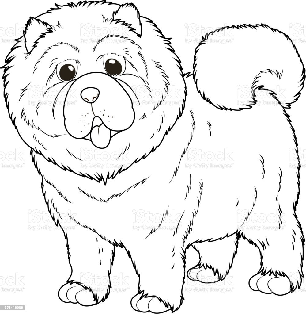 Doodle Animal For Chow Chow Dog Stock Illustration Download