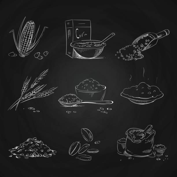 illustrazioni stock, clip art, cartoni animati e icone di tendenza di doodle cereals groats and porridge, muesli and cornflakes, oat and rye, wheat and barley, millet and buckwheat, rice and corn on blackboard - corn flakes