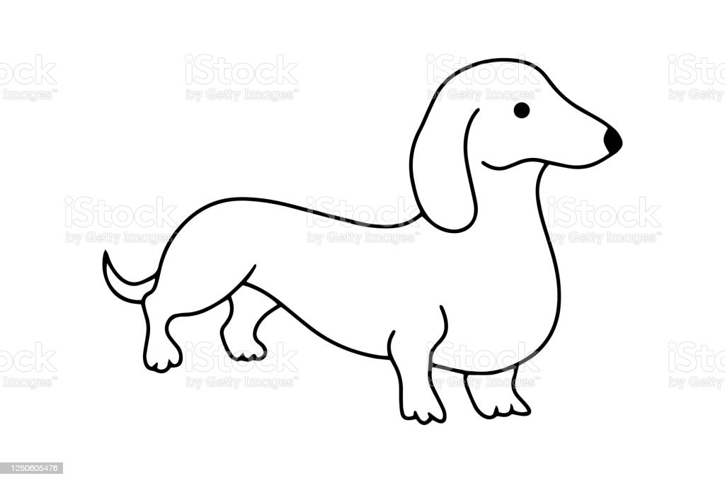 Doodle Dachshund Icon Isolated On White Hand Drawing Line Art Sketch Dog Coloring Page Book Zoo Outline Vector Stock Illustration Eps 10 Stock Illustration Download Image Now Istock