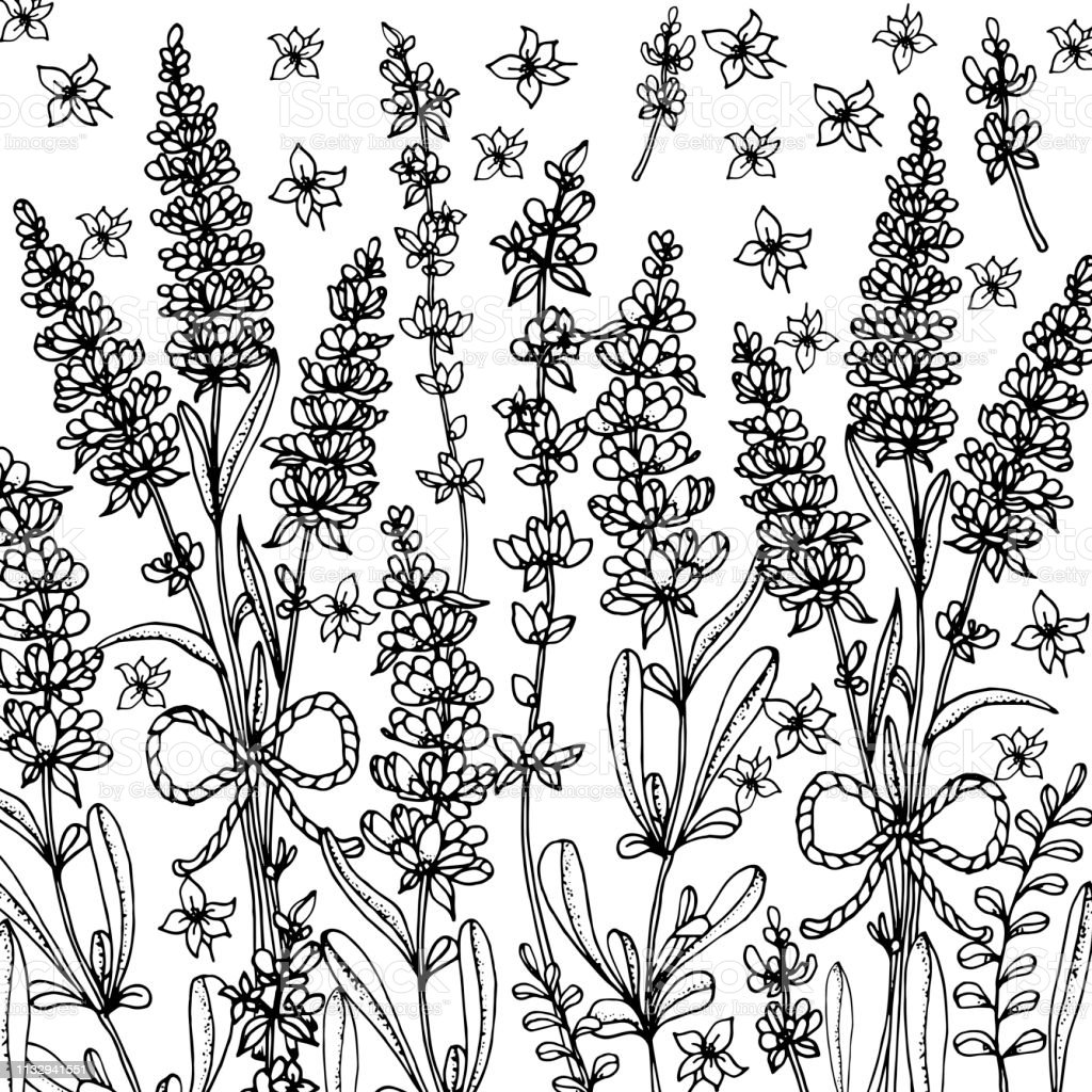 Doodle floral background in vector with doodles black and white...