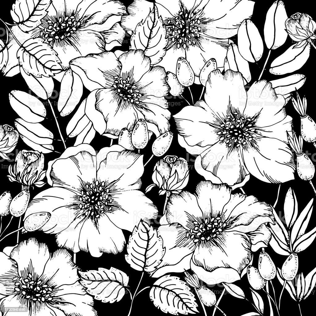 Doodle Cicek Kopekkaralamalar Siyah Ve Beyaz Boyama Sayfasi Ile