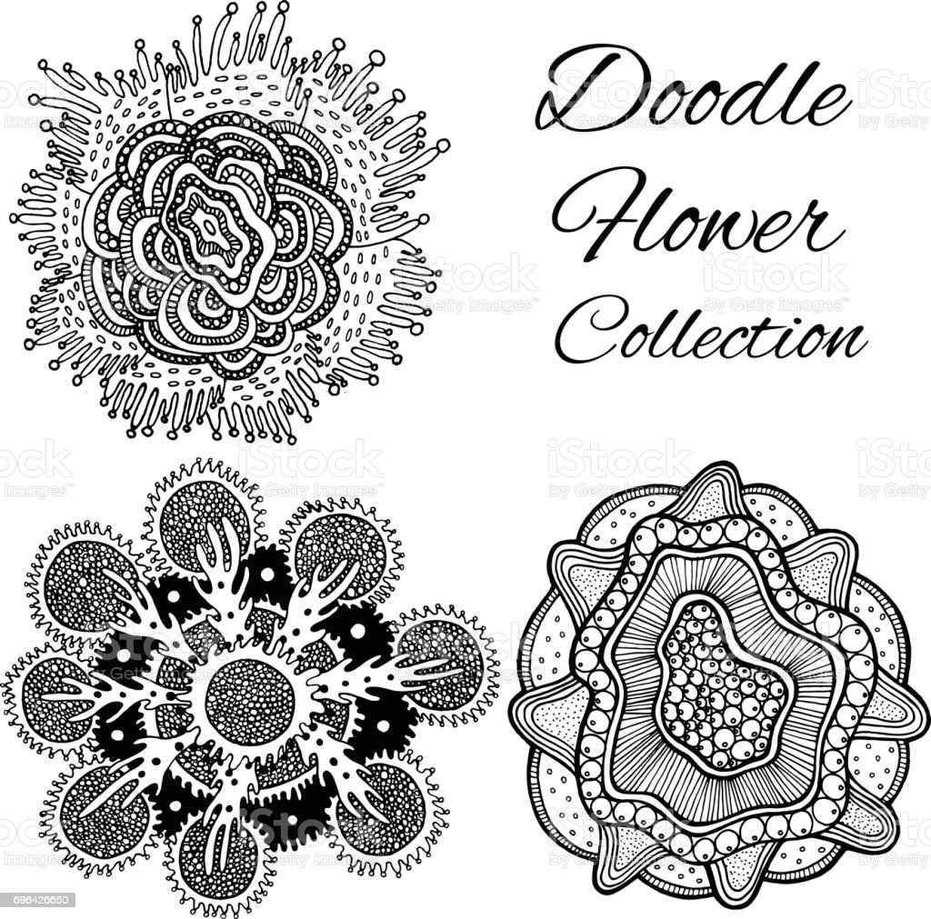 Vetores De Coleção Flor De Doodle Desenhada Flor Fantástica