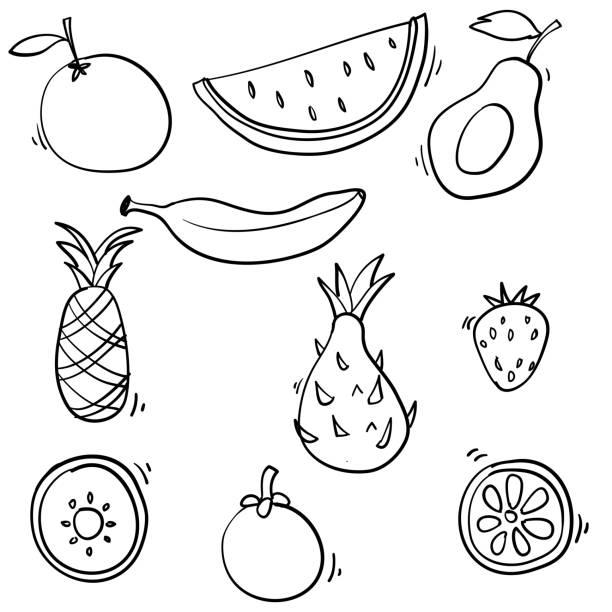 ilustrações, clipart, desenhos animados e ícones de doodle frutas coleção ilustração estilo de desenho animado desenhado à mão - fruit salad