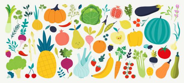 doodle früchte. natürliche tropische früchte, doodles zitrusorange und vitamin zitrone. vegane küche apfel handgezeichnet vektor illustration - gemüse stock-grafiken, -clipart, -cartoons und -symbole