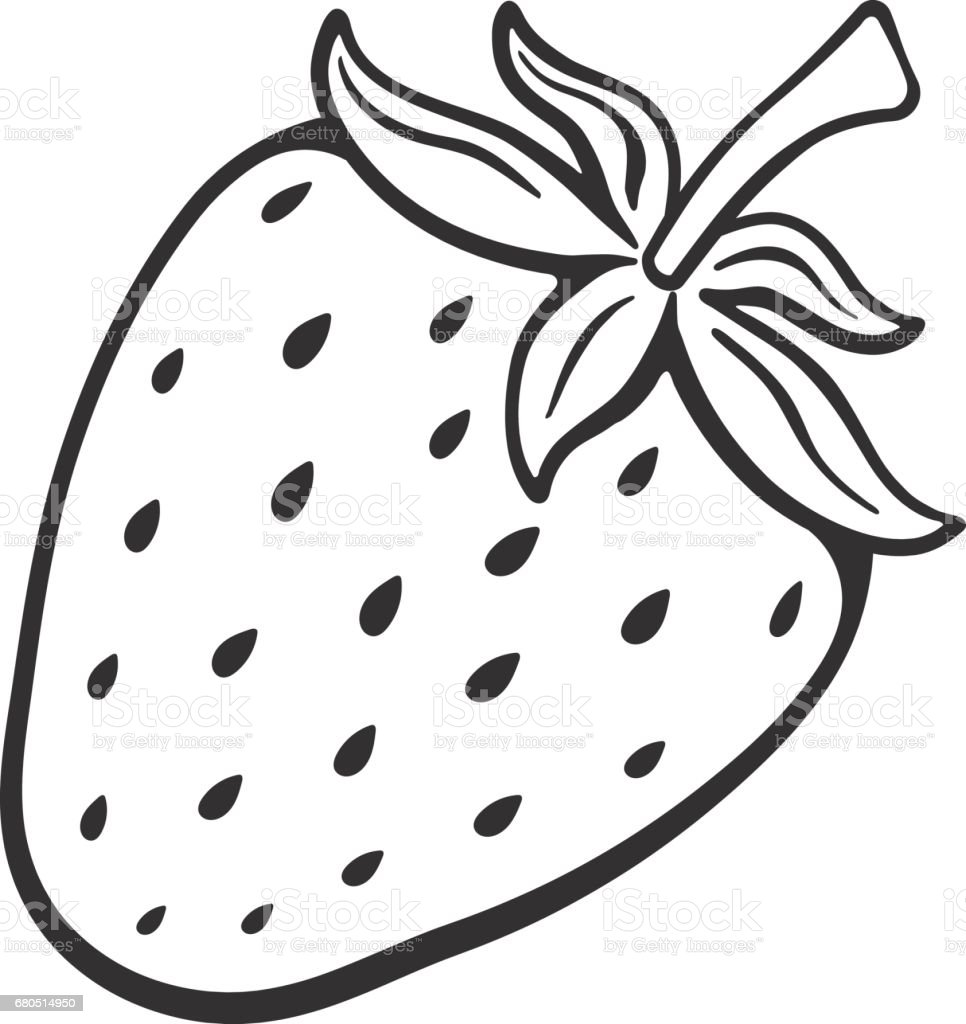 Doodle Of Sweet Strawberry Stock Vector Art  for Clipart Strawberry Black And White  575cpg