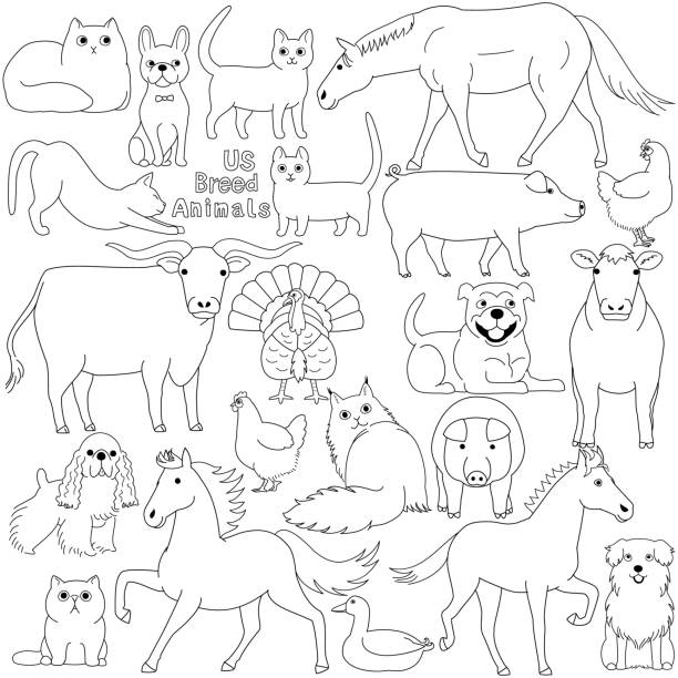 doodle of US breed domestic animals vector art illustration