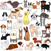 doodle of various dogs
