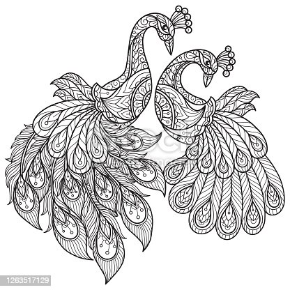istock doodle Peacock lovers tangles adult coloring page, Illustration  style. 1263517129