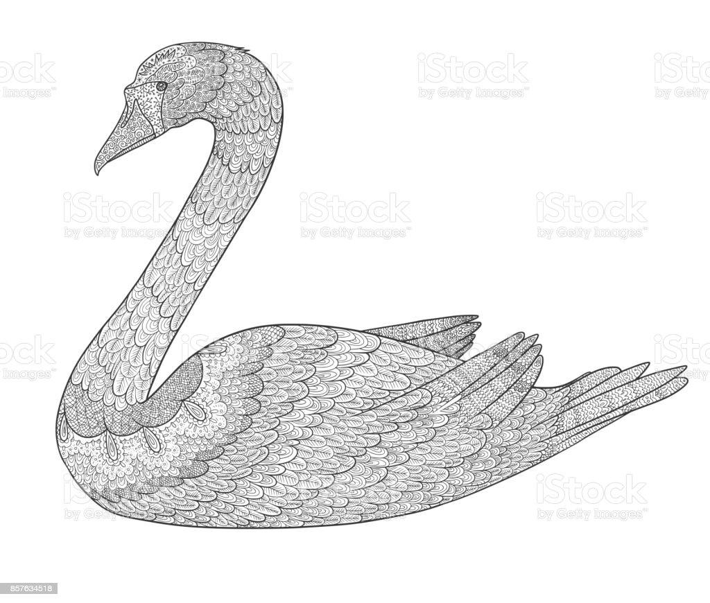 Kuğu Kitap Boyama Doodle Beyaz Arka Plan üzerinde Izole Kuş Stok