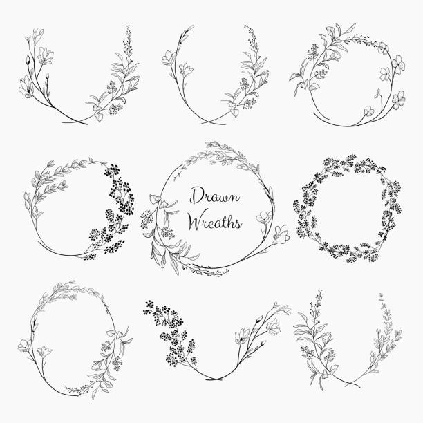 doodle wreaths with branches, herbs, plants and flowers - лекарственная трава stock illustrations