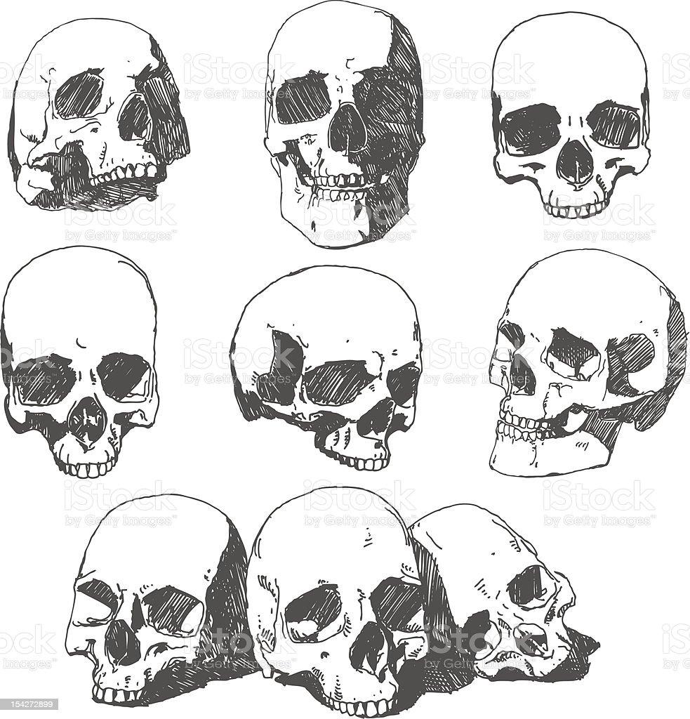 Doodled Skulls royalty-free stock vector art