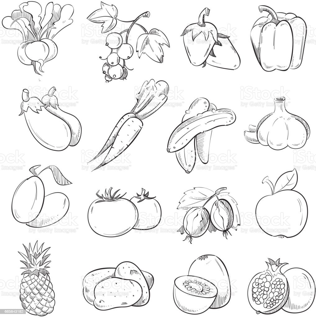 Doodles Of Vegetables And Fruits Hand Drawing Vegan ...
