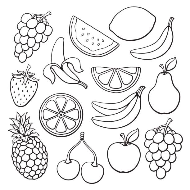 Doodles set of fruits and berries Vector illustration. Set of farm and tropical fruits and berries. Hand drawn doodles. Healthy vegetarian food. Decoration for menus, signboards, showcases, greeting cards, posters, wallpapers banana drawings stock illustrations