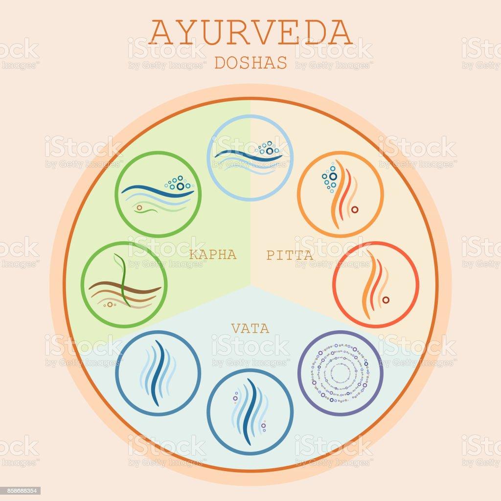 Doshas vata pitta kapha ayurvedic body types arte vetorial de ayurvedic body types doshas vata pitta kapha ayurvedic body ccuart Image collections
