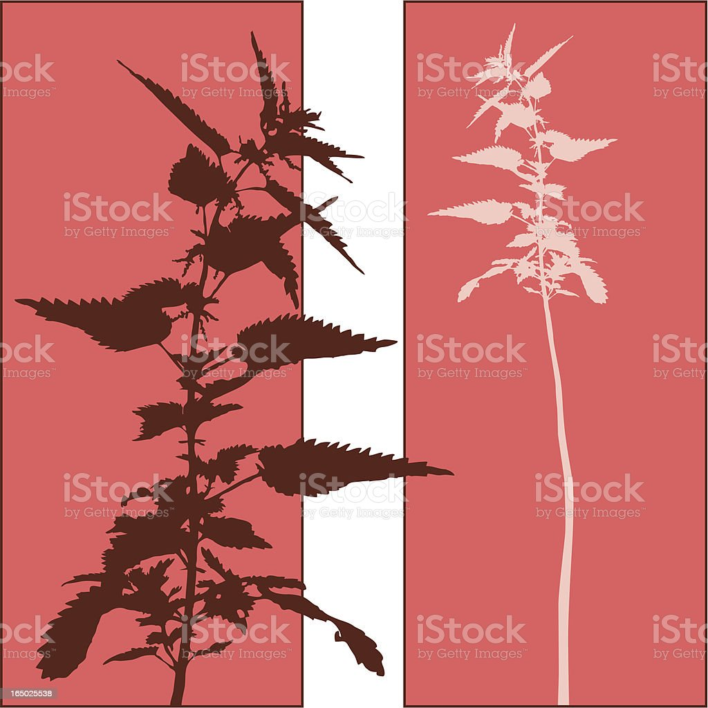 Double Plant royalty-free double plant stock vector art & more images of animal