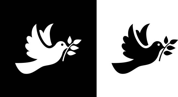 Dove Bird  Symbol Of Peace. Bird - Symbol Of Peace.This royalty free vector illustration features the main icon on both white and black backgrounds. The image is black and white and had the background rendered with the main icon. The illustration is simple yet very conceptual. tranquility stock illustrations