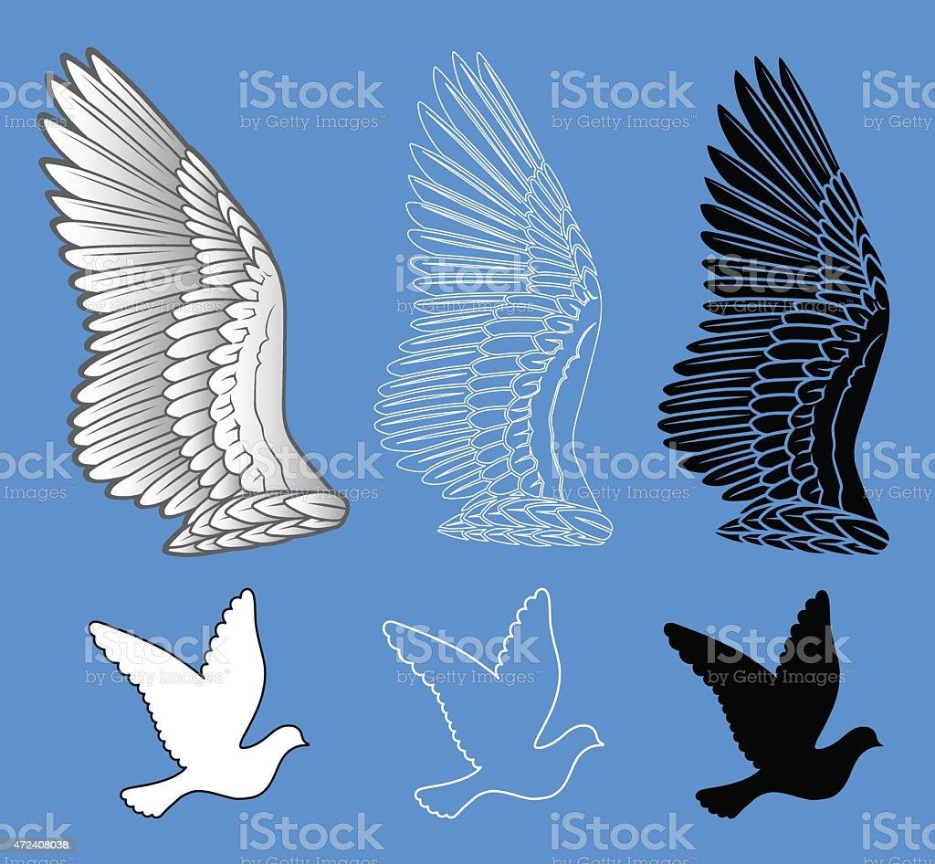 Colomba Set Di Ali Di Uccello Immagini Vettoriali Stock E