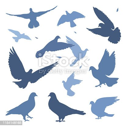 doves flock silhouettes isolated on white set.