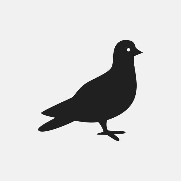 taube-symbol-darstellung - wildtaube stock-grafiken, -clipart, -cartoons und -symbole