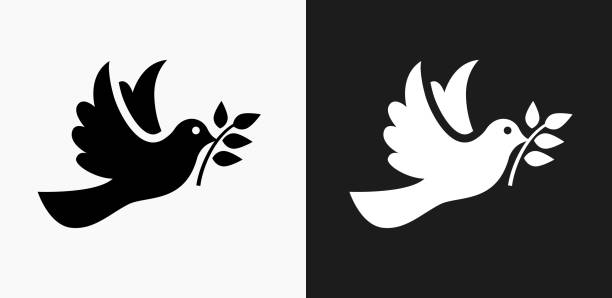 Dove Icon on Black and White Vector Backgrounds Dove Icon on Black and White Vector Backgrounds. This vector illustration includes two variations of the icon one in black on a light background on the left and another version in white on a dark background positioned on the right. The vector icon is simple yet elegant and can be used in a variety of ways including website or mobile application icon. This royalty free image is 100% vector based and all design elements can be scaled to any size. symbols of peace stock illustrations
