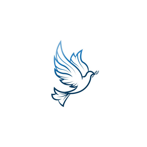 Dove Of Peace. Illustration with dove holding an olive branch symbolizing peace on earth. LIne Art dove. Ink painting style. Line art for logo and design. Vector illustration. Peace logo. Dove Of Peace. Illustration with dove holding an olive branch symbolizing peace on earth. LIne Art dove. Ink painting style. Line art for logo and design. Vector illustration. Peace logo. pigeon stock illustrations