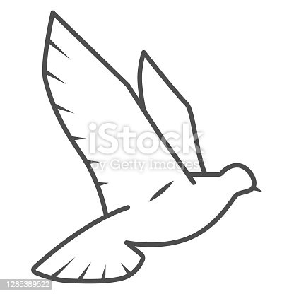 Dove of peace thin line icon, world peace concept, bird sign on white background, flying dove icon in outline style for mobile concept and web design. Vector graphics