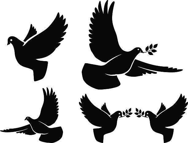 dove silhouetten - wildtaube stock-grafiken, -clipart, -cartoons und -symbole