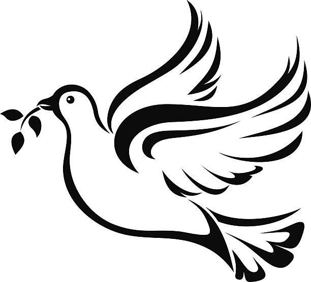 Dove. Symbol of peace. Vector black silhouette. Vector black silhouette of a flying dove with olive branch on a white background. bird clipart stock illustrations