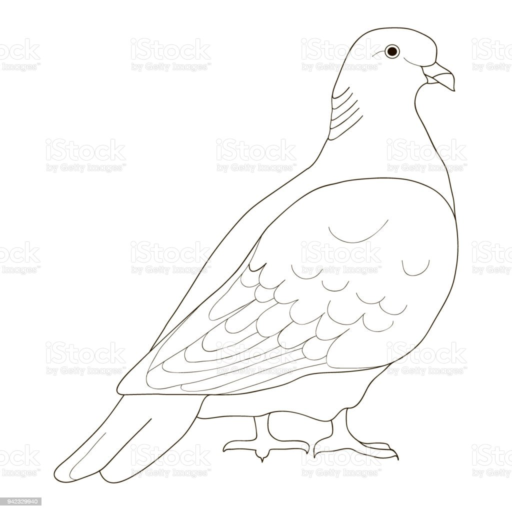 Dove To Be Coloring Pages Coloring Book For Preschool Kids Vector ...