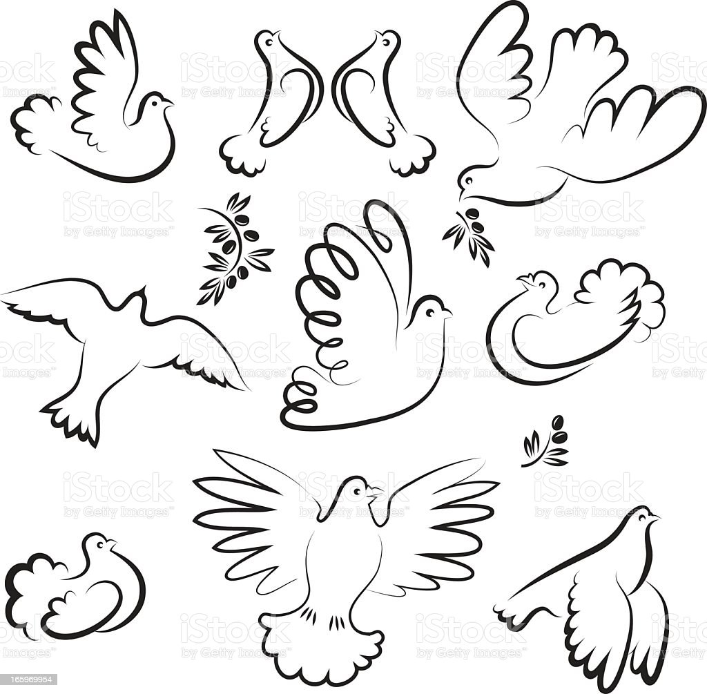 Dove vector art illustration