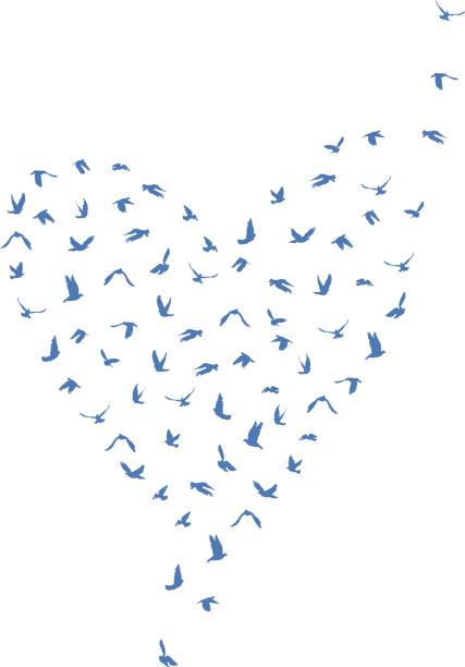 Doves pigeons set heart shape for peace concept and wedding Doves and pigeons set heart shape for peace concept and wedding design. Flying blue birds set. Vector illustration flock of sheep stock illustrations