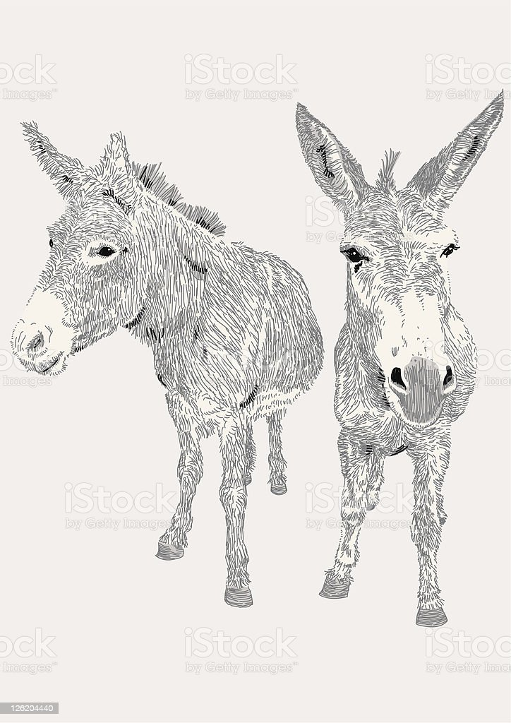 Dozy Donkeys vector art illustration