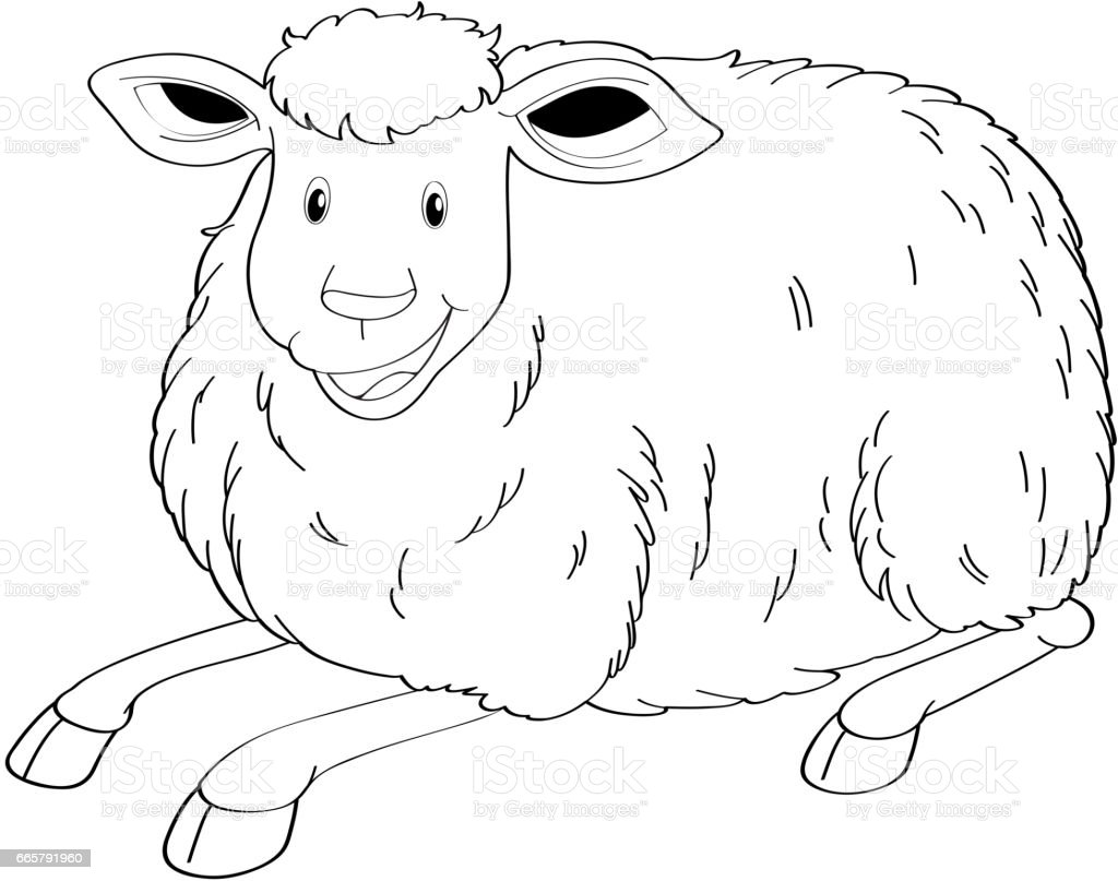 Drafting animal for cute sheep vector art illustration