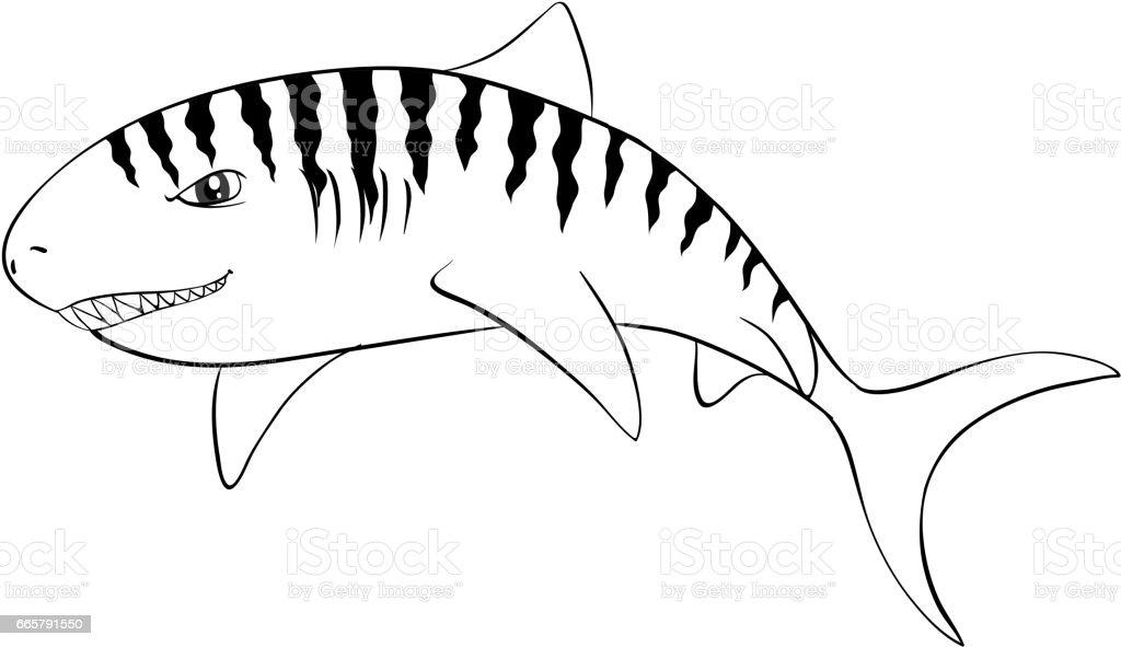 Drafting Animal For Tiger Shark Stock Illustration Download