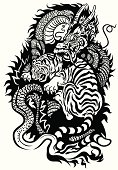 dragon and tiger fighting black and white tattoo illustration