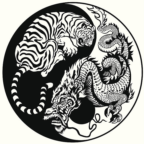dragon et tigre yin yang - Illustration vectorielle