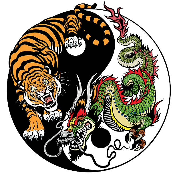 illustrations, cliparts, dessins animés et icônes de dragon and tiger yin yang - tatouages dragons