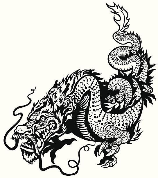 illustrations, cliparts, dessins animés et icônes de dragon noir blanc - tatouages dragons
