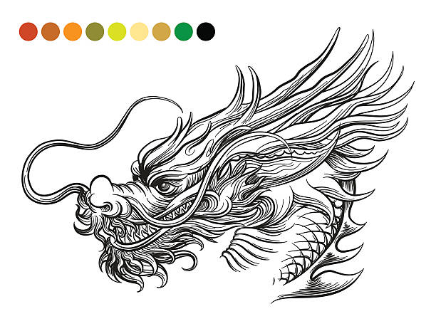 Dragon coloring page template - Illustration vectorielle