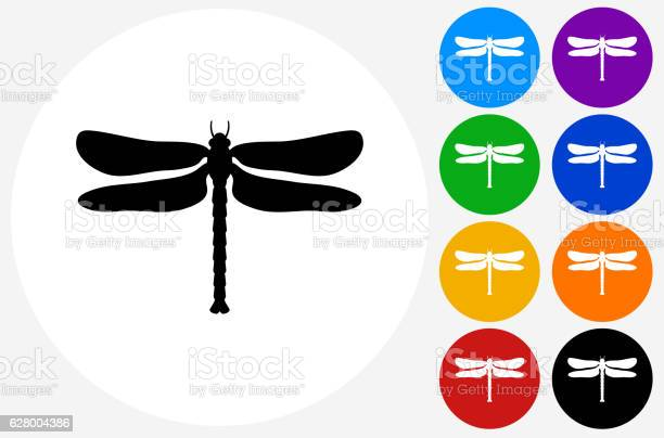 Dragon fly icon on flat color circle buttons vector id628004386?b=1&k=6&m=628004386&s=612x612&h=lb7efqkwmeidnm ogagrrj9m9i7rjz8iktu9lycpn2a=