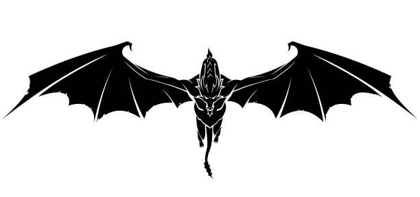 Dragon Front Glide vector art illustration
