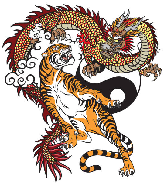 stockillustraties, clipart, cartoons en iconen met dragon versus tijger tattoo - tijger
