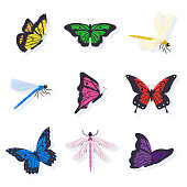 Dragonflies and butterflies illustrations set. Insects with bright color wings vector clipart. Isolated design elements for scrapbook, postcard. Entomology collection. Summer, spring. Wildlife, nature