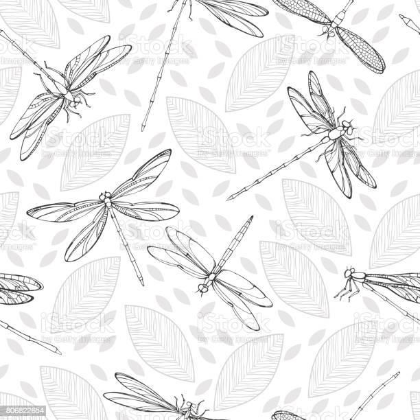 Dragonflies and leaves on a white background monochrome seamless vector id806822654?b=1&k=6&m=806822654&s=612x612&h=shitamu tdehrnsymzsllu5tlfzgrdgyqu8 pyo2now=
