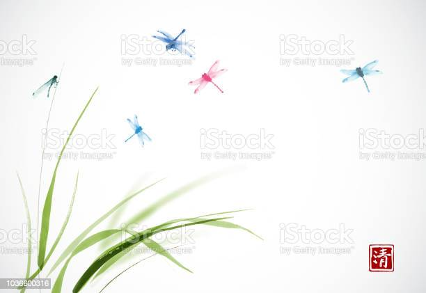 Dragonflies flying over the green grass traditional oriental ink vector id1036600316?b=1&k=6&m=1036600316&s=612x612&h=7yva zmu0hdqgxjvquhrwkjheef5mcbpjoojinlab5k=