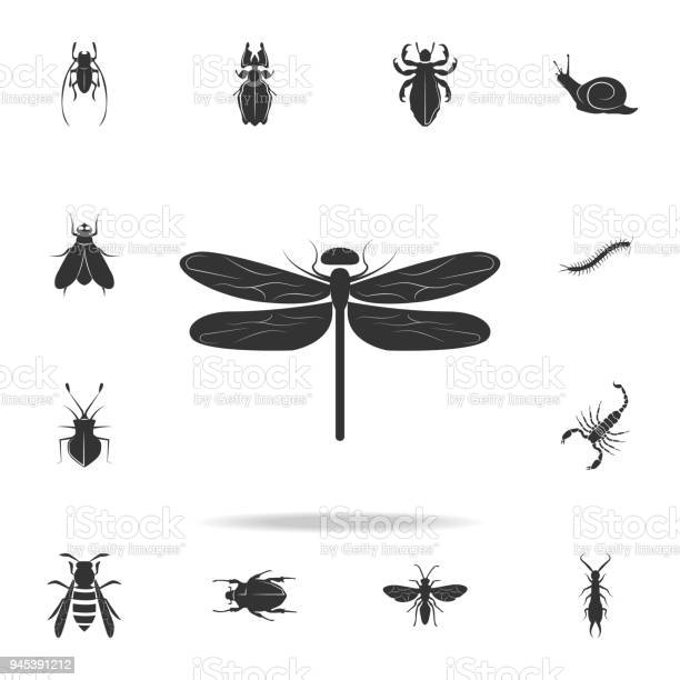 Dragonfly detailed set of insects items icons premium quality graphic vector id945391212?b=1&k=6&m=945391212&s=612x612&h=di z0865lsbkzny yzoen3uepgwb4nmi6gyvgdtakly=