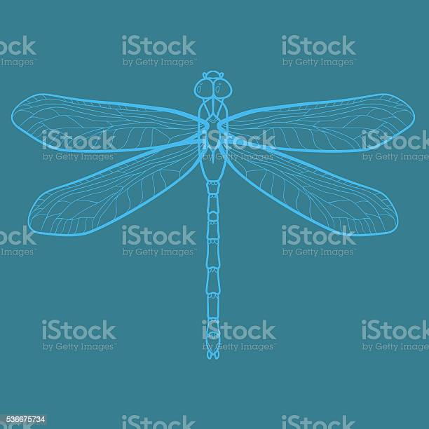Dragonfly graphic vector illustration vector id536675734?b=1&k=6&m=536675734&s=612x612&h=nv3wa8js95izs6cfz17nsqu8kwgsy6c3swbcuys0iwc=